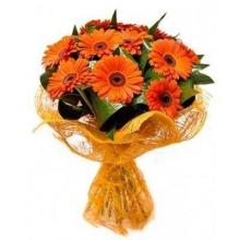10 Orange Gerberas Bouquet