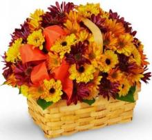 Yellow and Purple Chrysanthemums Basket