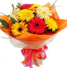 8 Mixed Gerberas Bouquet