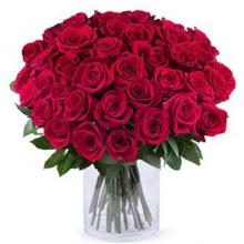 50 red roses in glass vase