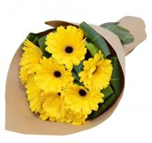 12 yellow Gerberas bouquet
