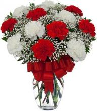 Red and White carnations vase