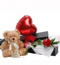Gift box with Teddy