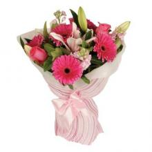 5 Gerberas,  5 Pink Roses with 1 Stem liliy