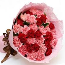 24 Red  and Pink Carnations Bouquet